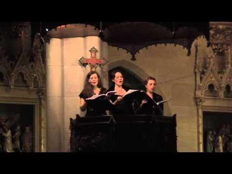 Sonata sopra Sancta Maria ora pro nobis
