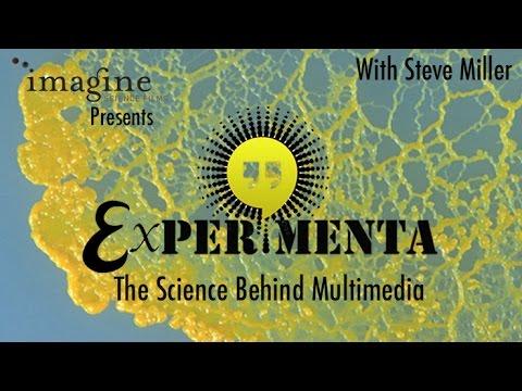 Experimenta: The Science Behind Multimedia