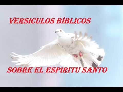 VERSÍCULOS BÍBLICOS SOBRE EL ESPÍRITU SANTO