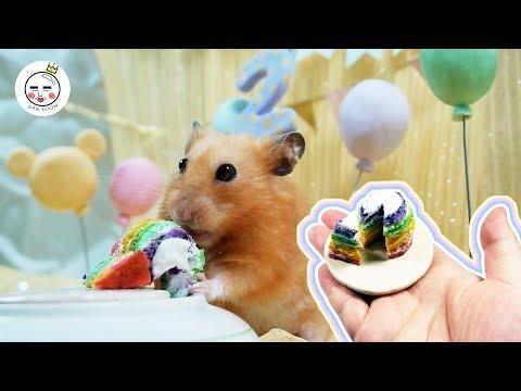 How To Make A Tiny Rainbow Cake For Hamsters   Taco's Birthday   Hamster Eating ASMR