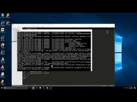 How to install fix bcrypt on WINDOWS