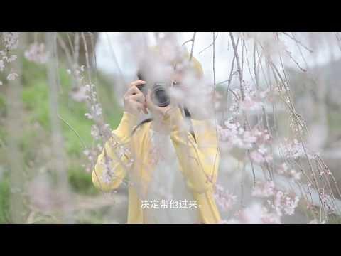飛騨国 下呂の旅 春30(簡体)