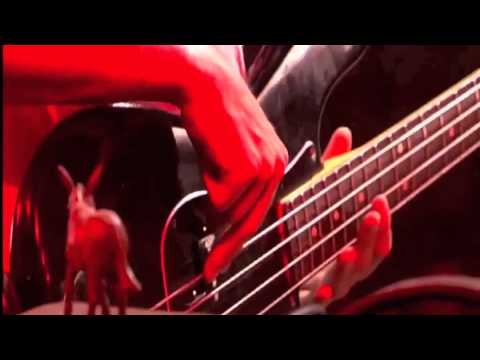 mumford-sons-thistle-weeds-live-lowlands-2010-kyle-doherty