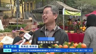 [天下财经]年关近 年味浓 广东顺德:大良迎春花市开锣| CCTV财经