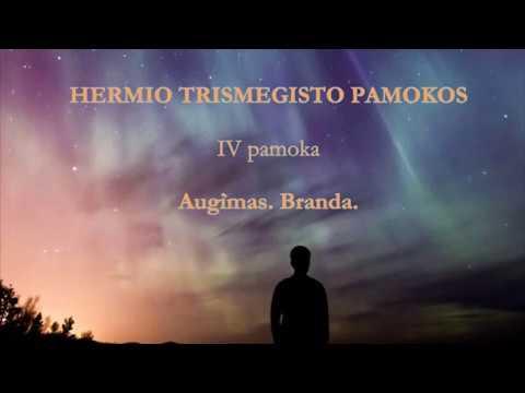 HERMIS TRISMEGISTAS IV pamoka: Augimas. Branda