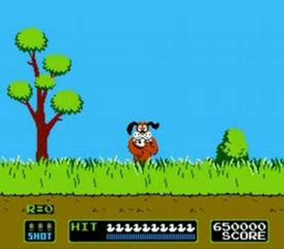 Duck Hunt Level 100 Error