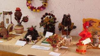 Городская выставка «Природа и фантазия» на станции юных натуралистов