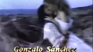 Entrada de Corazón Salvaje - España - Plácido Domingo