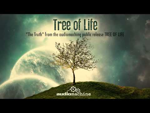 Audiomachine - The Truth