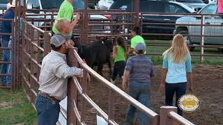 06 Calf Scramble - 16 July 2017, Lakin KPRA Rodeo