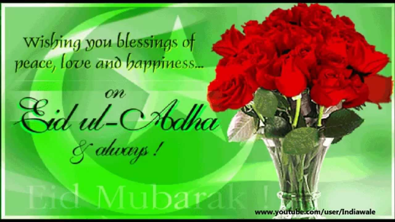 Happy bakra eid 2015 eid al adha sms wishes greetings whatsapp happy bakra eid 2015 eid al adha sms wishes greetings whatsapp video message youtube m4hsunfo Gallery