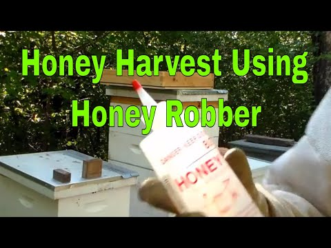 Summer Honey Harvest 2017 using Honey Robber (Butyric Acid)