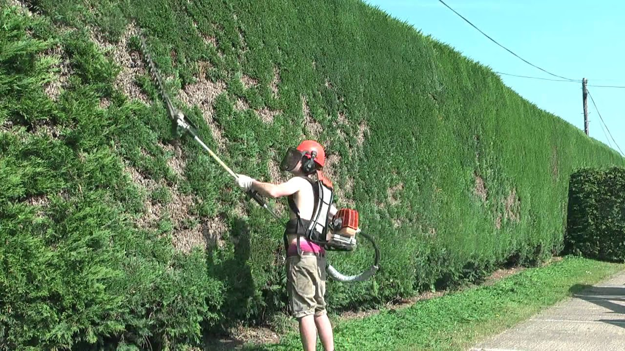 Time Lapse Hedge Trimmer Youtube