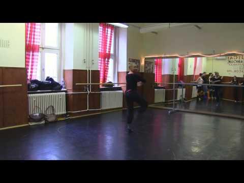 Schola Europa kortárs-,modern táncos képzés