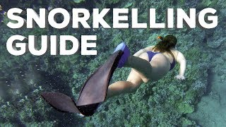 Snorkelling Guide