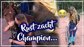 Champion wordt INGESLAPEN?!..... Deze dag is een HEL!