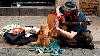 Топ 9 самых необычных уличных музыкантов