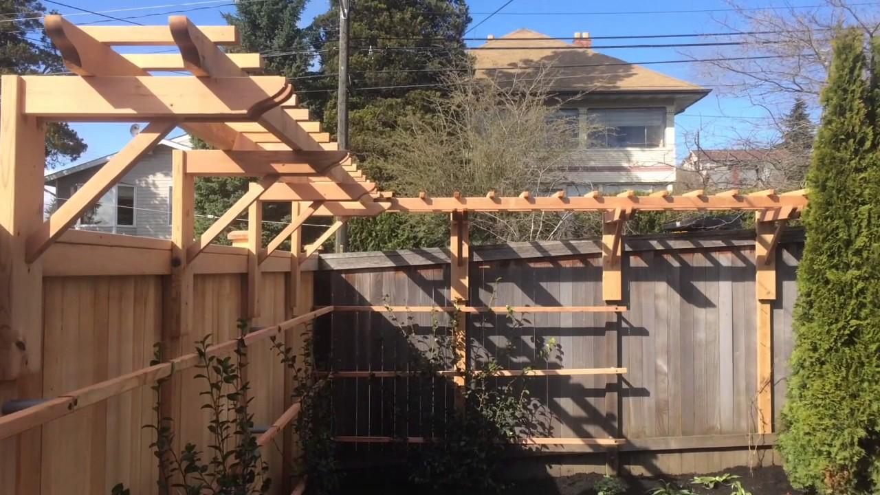 A Cedar Garden Trellis For Espalier Camellia