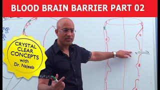 Blood Brain Barrier Part 2 - Circumventricular Organs