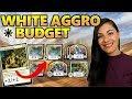 Budget White Aggro - MTG Arena Budget Decks Guide | Magic GRN