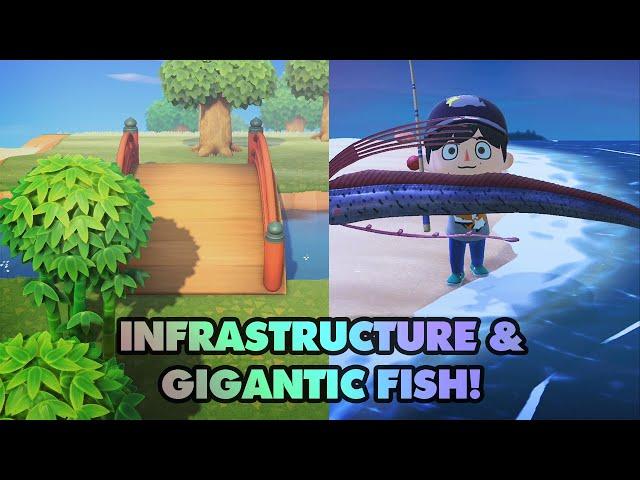 Infrasturcture & LEGENDARY FISH! - Animal Crossing New Horizons