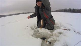 Первая зимняя рыбалка 2021г Ловим на жерлицы Мормышки от Дяди Фишер