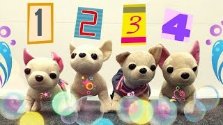 Развивающее видео для самых маленьких: считаем собачек, собираем пирамидку и многое другое!