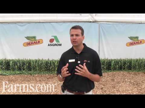 Monsanto RoundUp Ready 2 Xtend Soybean Crop System Overview