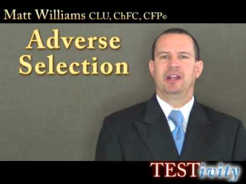exactly-what-is-on-the-l&h-insurance-license-exam--testivity-video-course-sample.