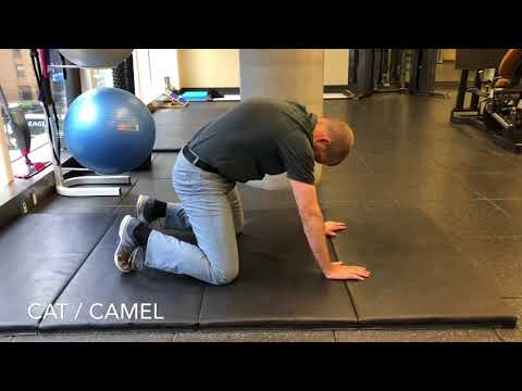 5 Exercises to Improve Thoracic Spine Rotation