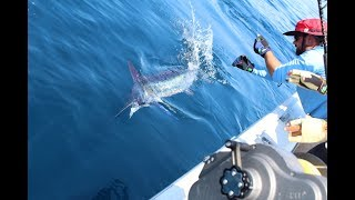 2018 Fishing Season - Video compilation of photos includes deepdrop swordfish and bigeyes.