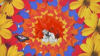 FELIX SANDMAN - Don't Look Back In Anger (Official Video)