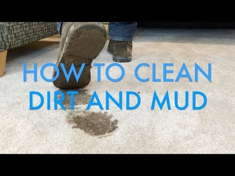 How to Clean Dirt and Mud Stains from Carpet   Life is Clean