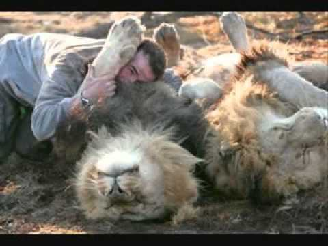 друг по гороскопу лев