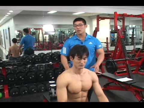근육운동 팔