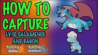 How to Capture Level 10 Salamence and Bagon - Pokemon Sun and Moon