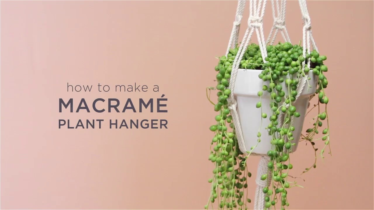 How To Make A Macrame Plant Hanger Ftd Com