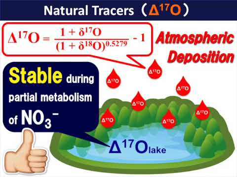 L&O:Quantifying nitrate dynamics in a mesotrophic lake using triple oxygen isotopes as tracers
