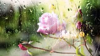 Melodic Brothers & Bryan Milton -  Summer Rain (Original mix)