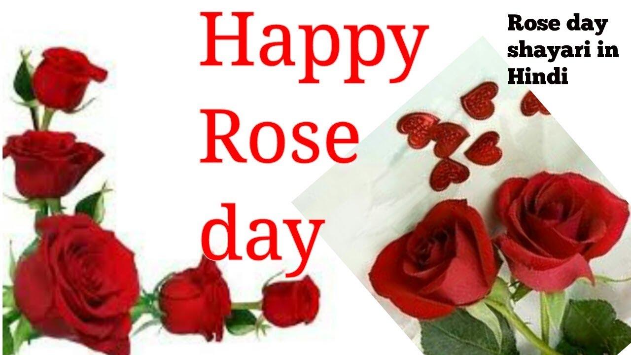 Happy Rose Day Shayari Video7th Febroseday Shayari In Hindirose