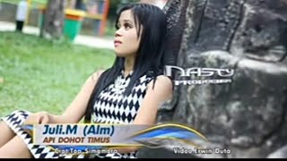 Download Mp3 Api Dohot Timus Juli M  Alm    Musik Video