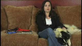 Dog Training The Gentle Effective Method Dvd  - Clip From Bonus Segments