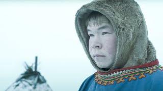 Жизнь оленеводов Перешли через Карское море с полуострова Ямал в лесотундру