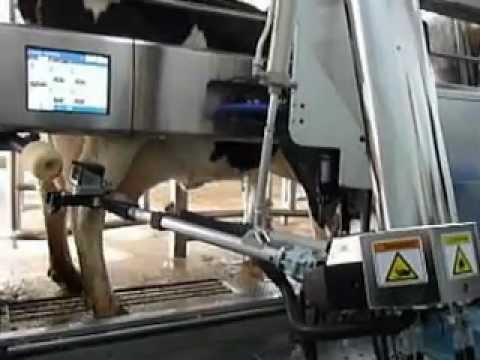 DeLaval VMS Robotic Milker