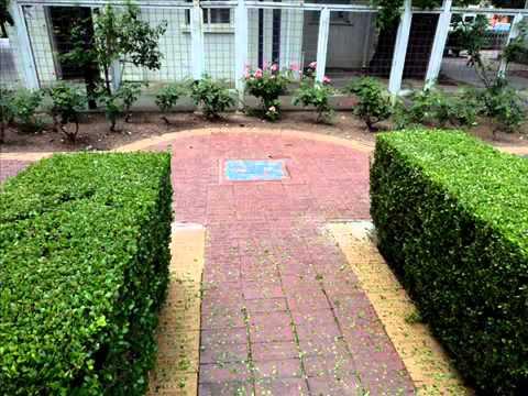 Superbe Garden Bricks I Garden Paving And Bricks Garden Bricks I Garten Pflaster  Und Bricks