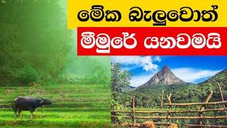 Picture.lk TV : මීමුරේ ගම්මානය  - Meemure Village