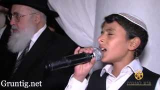 Uziya Tzadok -Kochav Meir | Live At Chuppah עוזיה צדוק בחתונת נכדת הרב עובדיה זיע