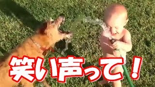Baby Laughing Videos Compilation / 「絶対笑う」 笑い声っていいな!...