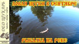 Ловля щуки в начале сентября Рыбалка на реке