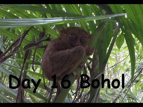 Bohol Hero4 Black Day 16 Travel Vlog